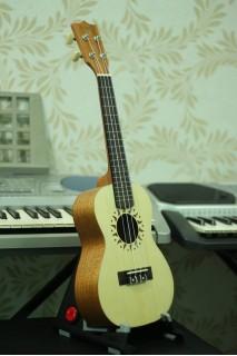 Đàn Ukulele gỗ mahogany  MS M55