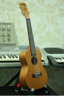 Đàn Ukulele gỗ mahogany  MS M55F